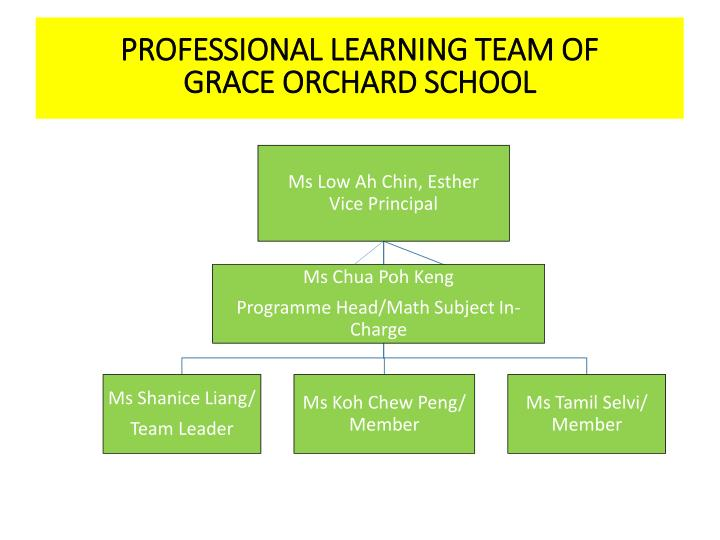 PROFESSIONAL LEARNING TEAM OF