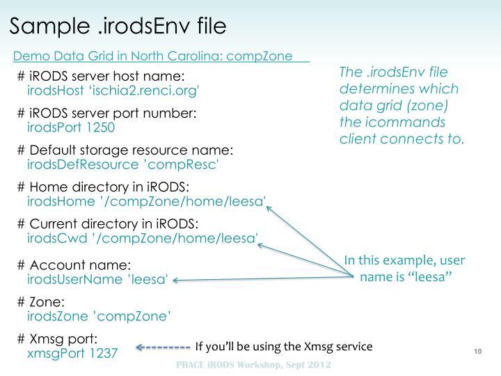 Sample .irodsEnv file