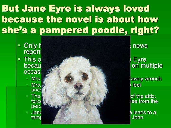 But Jane Eyre is always loved because the novel is about how she's a pampered poodle, right?