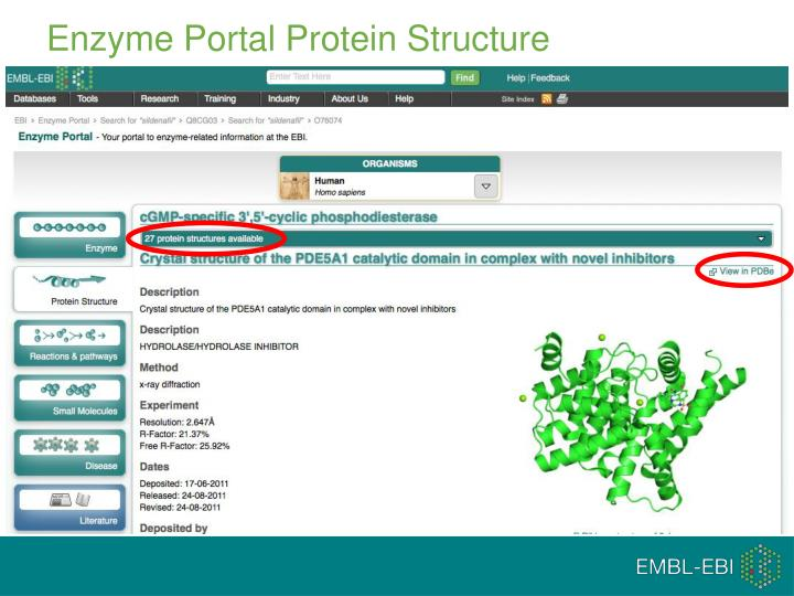 Enzyme Portal Protein Structure