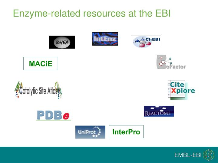 Enzyme related resources at the ebi