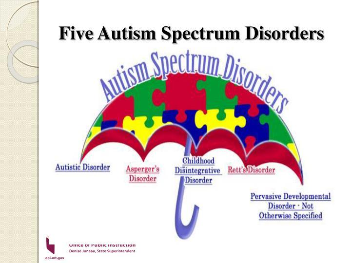 Five Autism Spectrum Disorders