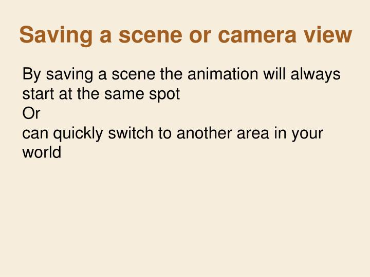 Saving a scene or camera view