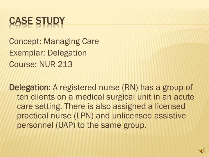Teaching Nursing Delegation: An On-Line Case Study