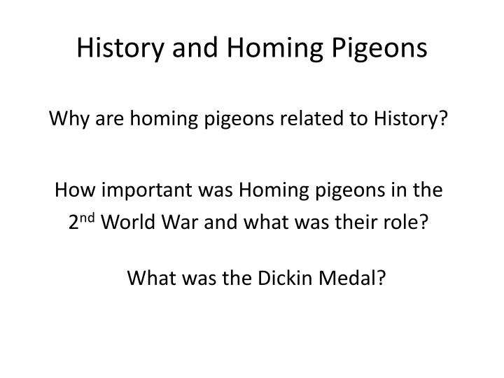 History and homing pigeons
