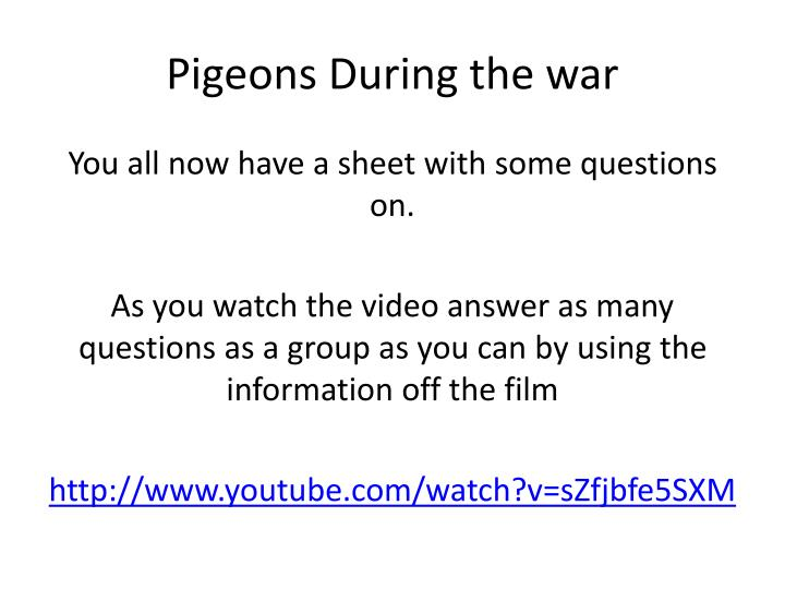 Pigeons During the war