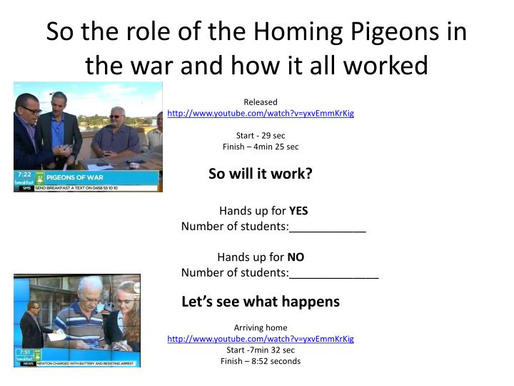 So the role of the Homing Pigeons in the war and how it all worked