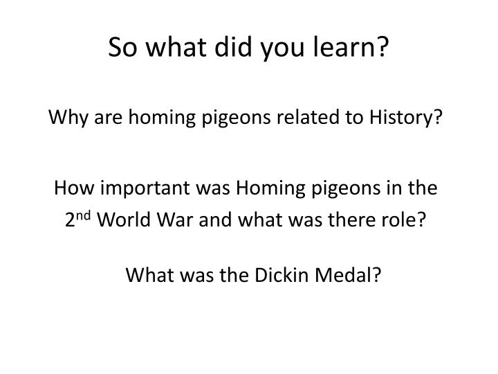 So what did you learn?