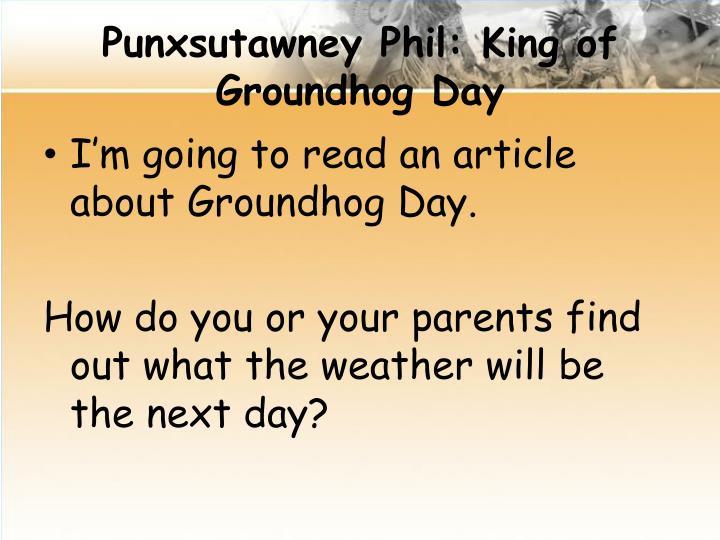 Punxsutawney Phil: King of Groundhog Day