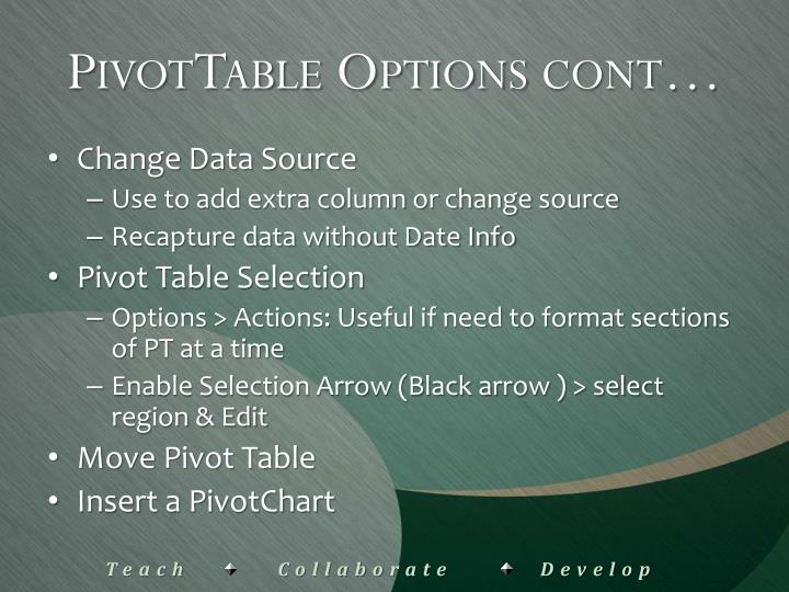 PivotTable Options