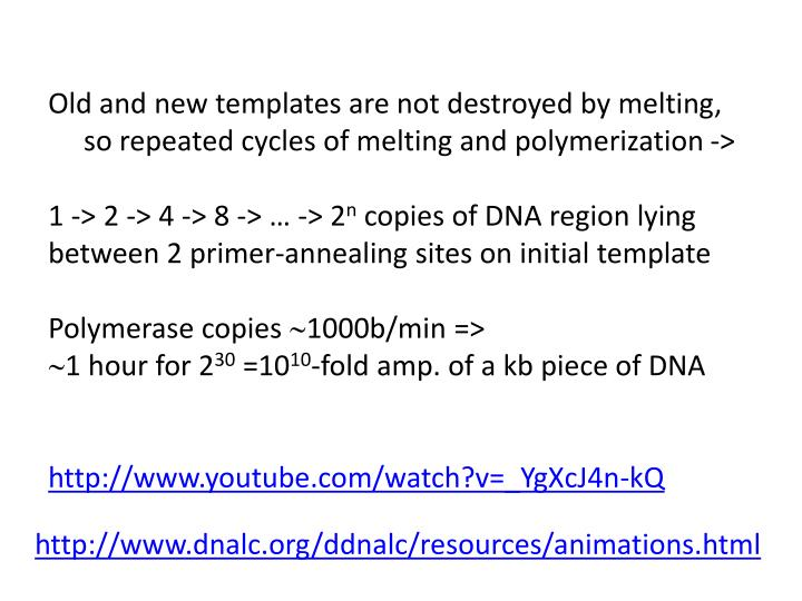 Old and new templates are not destroyed by melting,