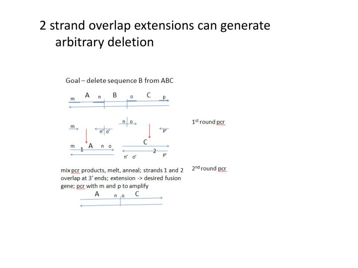 2 strand overlap extensions can generate