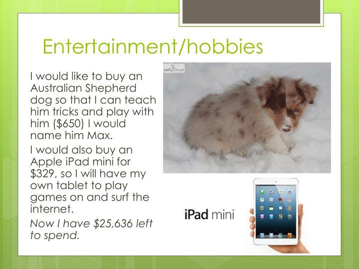 Entertainment/hobbies