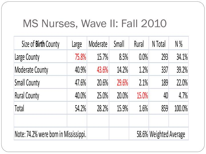 MS Nurses, Wave II: Fall 2010