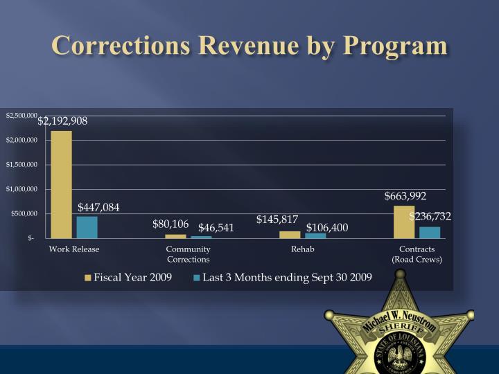 Corrections Revenue by Program