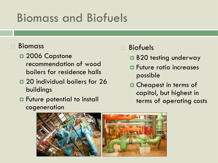 Biomass and Biofuels
