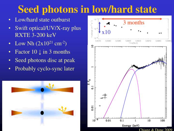 Seed photons in low/hard state
