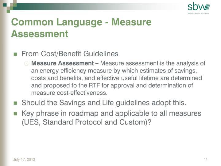 Common Language - Measure Assessment