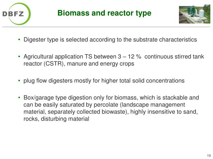 Biomass and reactor type