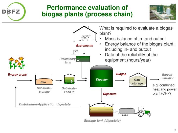 Performance evaluation of biogas plants process chain