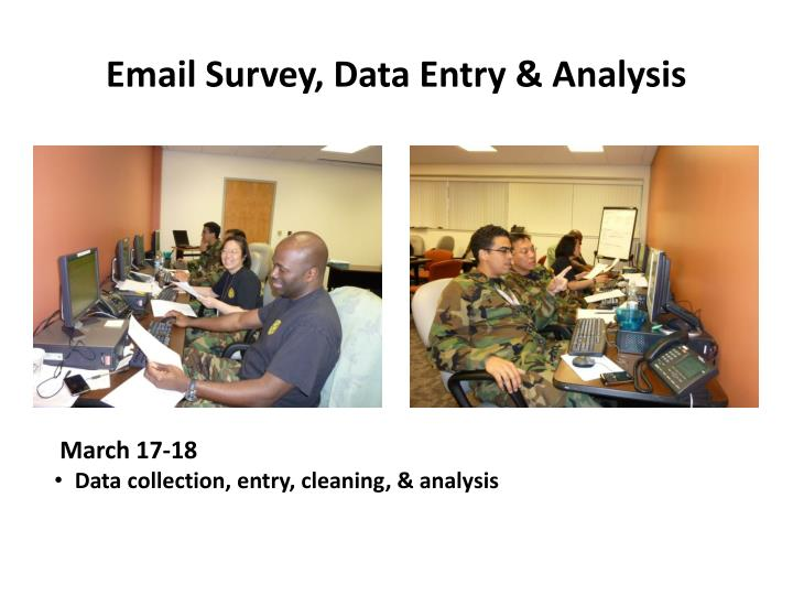 Email Survey, Data Entry & Analysis