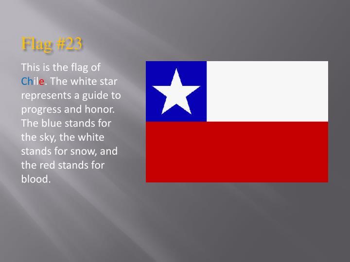 Flag #23