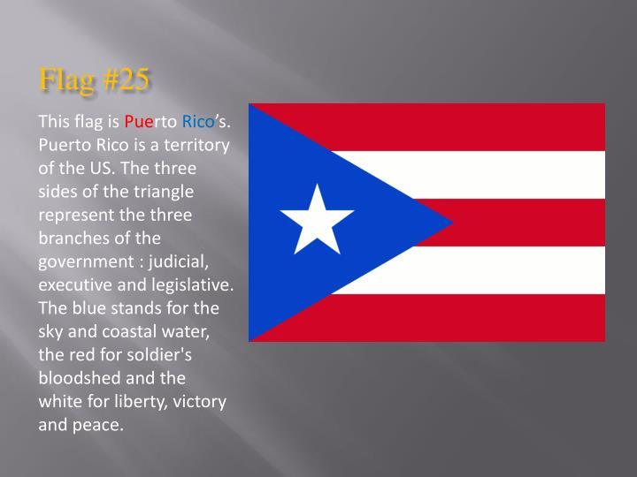 Flag #25