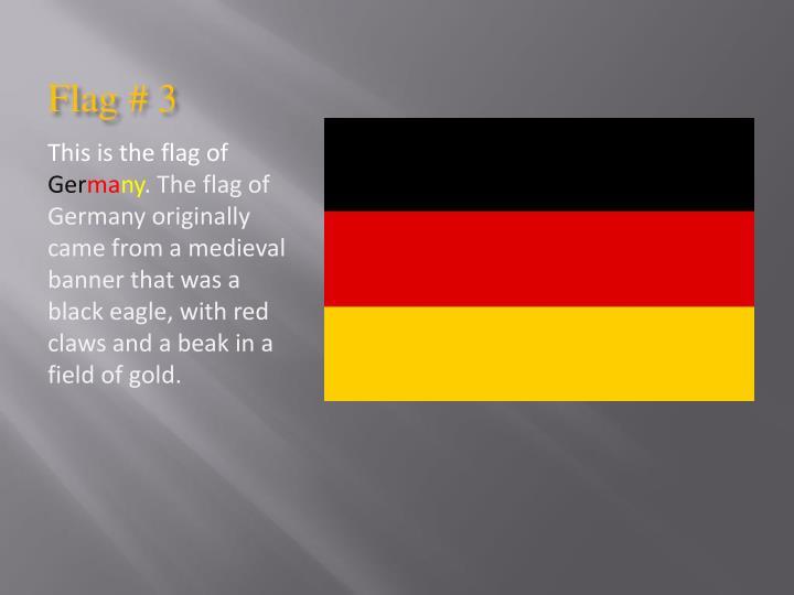 Flag # 3