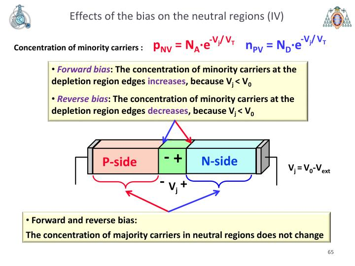 Effects of the bias on the neutral regions (IV)
