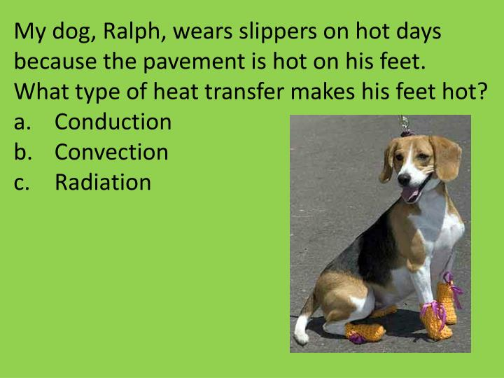 My dog, Ralph, wears slippers on hot days because the pavement is hot on his feet.  What type of heat transfer makes his feet hot?