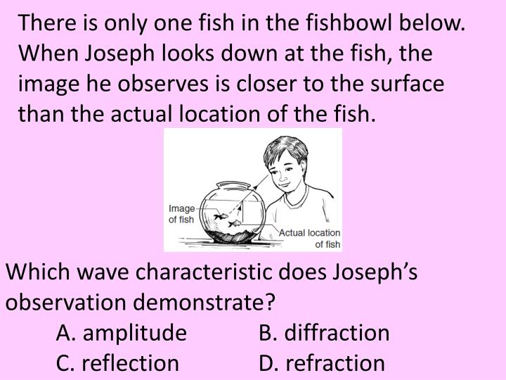 There is only one fish in the fishbowl below. When Joseph looks down at the fish, the image he observes is closer to the surface than the actual location of the fish.