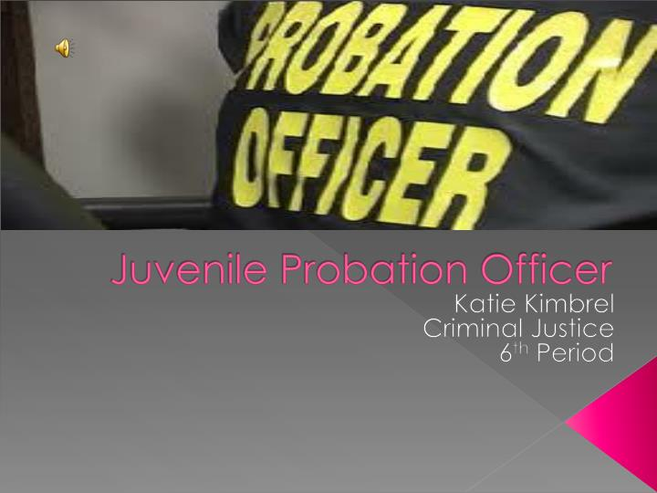 probation officer research papers