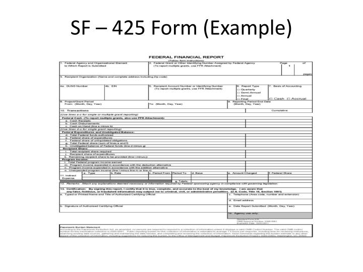 SF – 425 Form (Example)