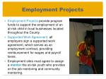 employment projects