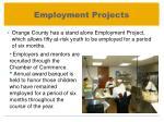employment projects1