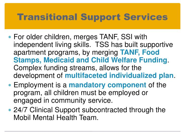 Transitional Support Services