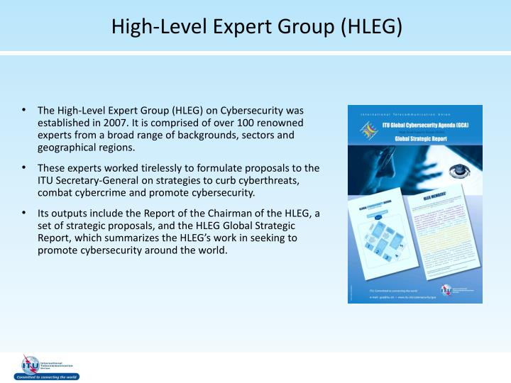 High-Level Expert Group (HLEG)
