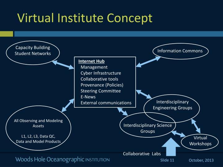 Virtual Institute Concept