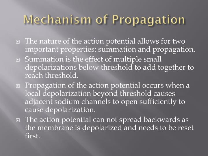 Mechanism of Propagation