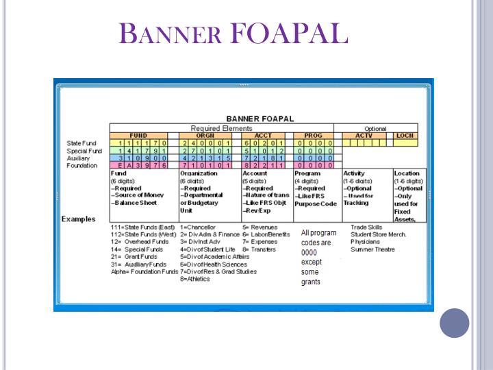 Banner FOAPAL