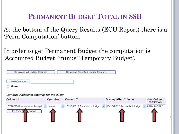 Permanent Budget Total in SSB