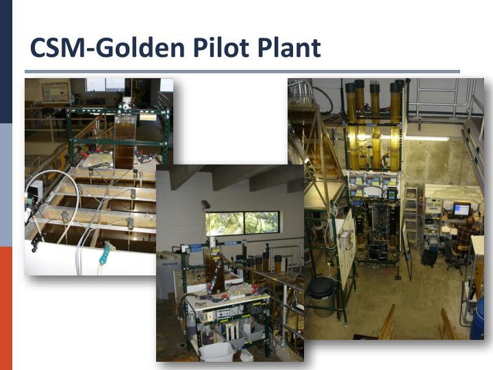 CSM-Golden Pilot Plant