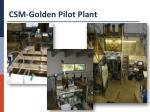 csm golden pilot plant