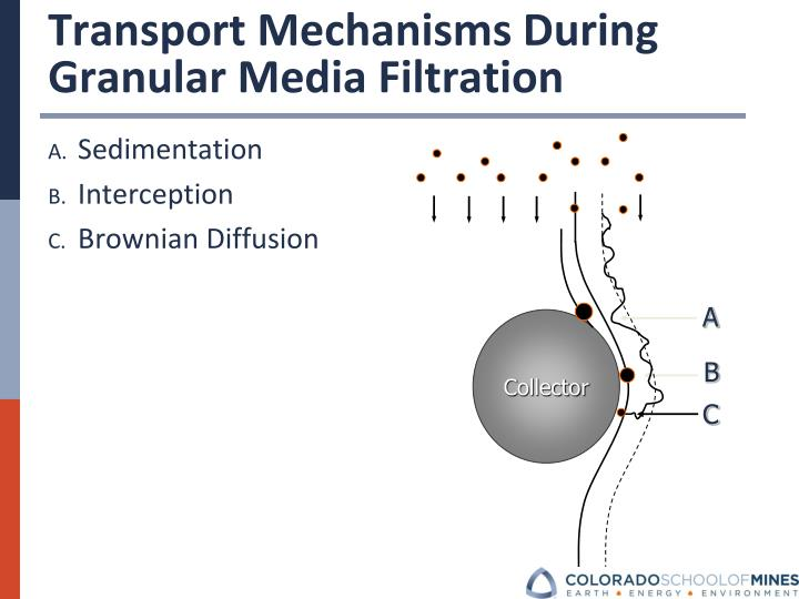Transport Mechanisms During   Granular Media Filtration