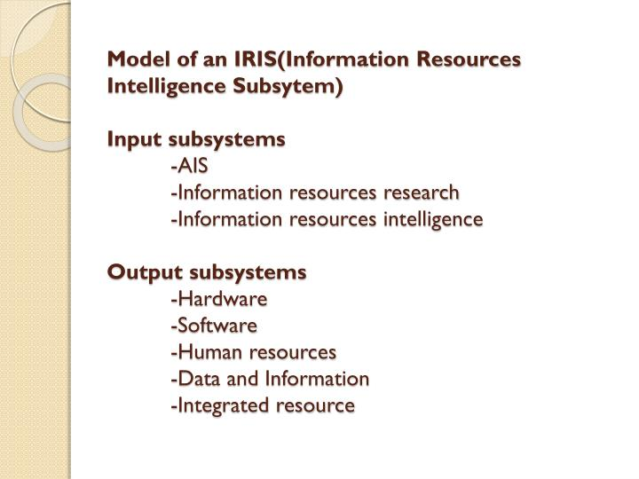 Model of an IRIS(Information Resources Intelligence
