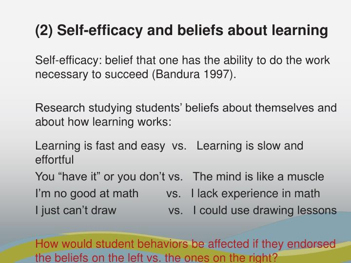(2) Self-efficacy and beliefs about learning
