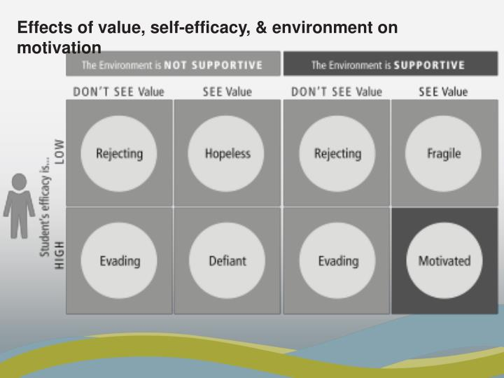 Effects of value, self-efficacy, & environment on motivation