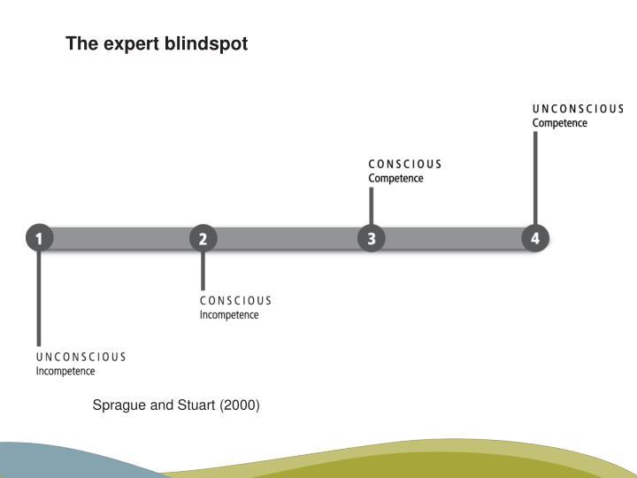 The expert blindspot