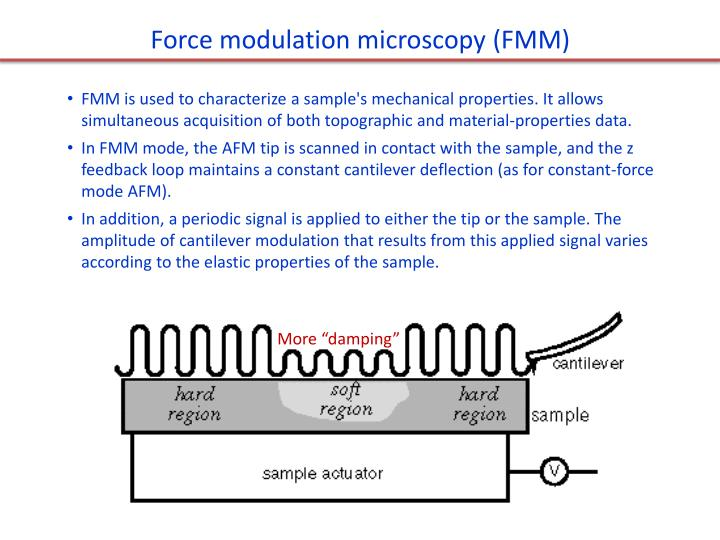 Force modulation microscopy (FMM)