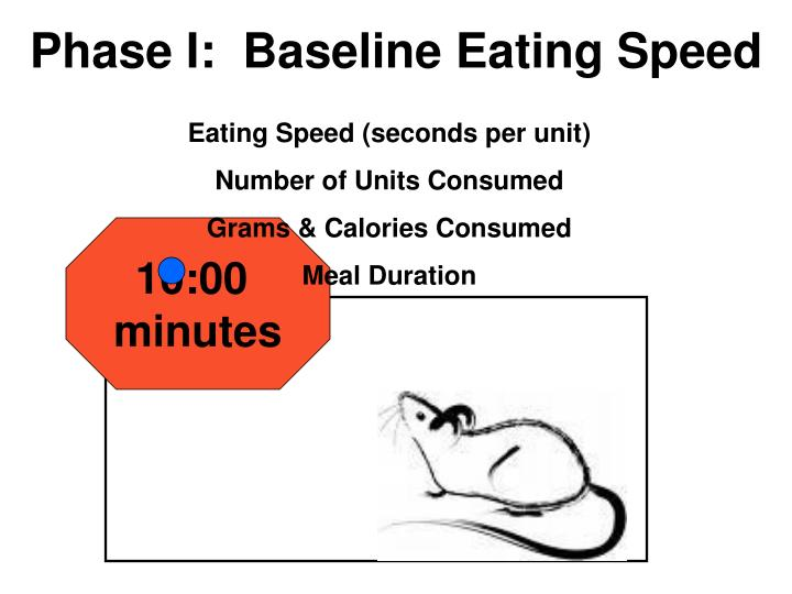 Phase I:  Baseline Eating Speed